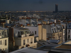 stormy weather (lux fecit) Tags: storm paris roofs orage
