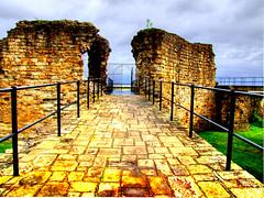Wales Flint Castle (Tony Shertila) Tags: castle wales flint ironring edwardi photographyrocks mywinners platinumheartaward theperfectphotographer