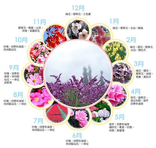 武陵農場四季主要花卉