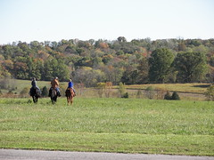 Sunday Afternoon Ride (JoanieR) Tags: ourkentucky