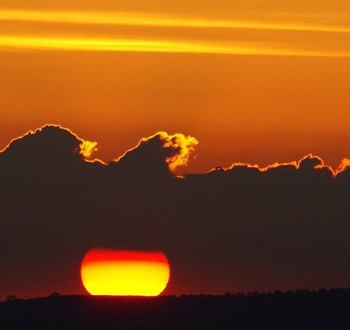 SUN by algo.