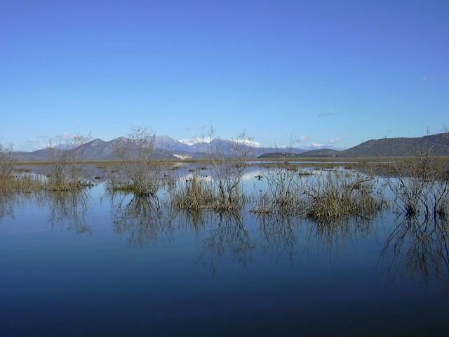 Ήπειρος - Αρτα - Δήμος Αμβρακικού Βάλτος Ροδιάς, Λιμνοθάλασσα Κωνστάντιο