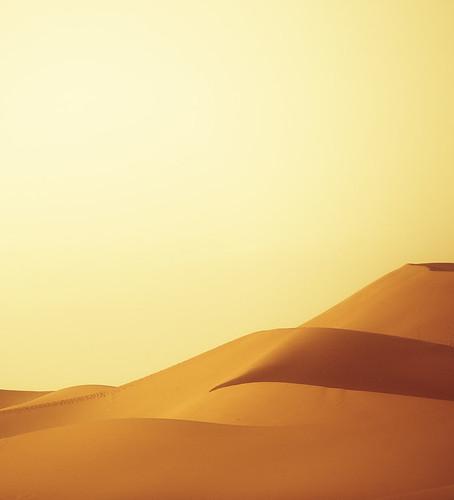 Golden Sands of Erg Chebbi