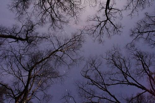 森星 画像4