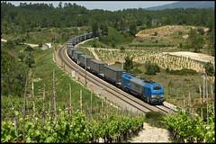 Comsa 335.001 (Rui Nuns) Tags: portugal train euro fujifilm freight comboio 4000 carga s6500 mercadorias comsa 335001 ruinunes