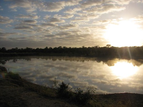 sunrise over the water hole