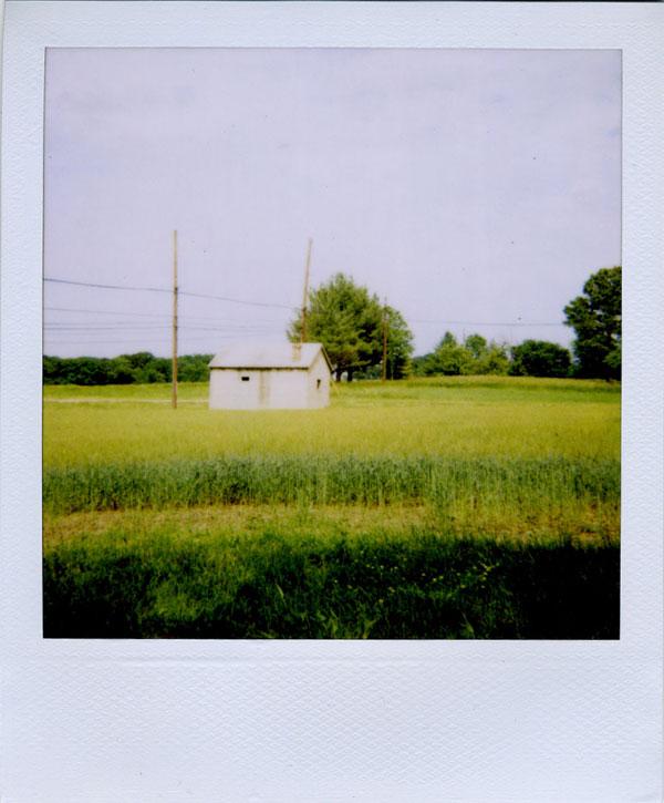 pola: farm shed