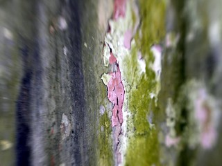 Paint and Surface Texture 2
