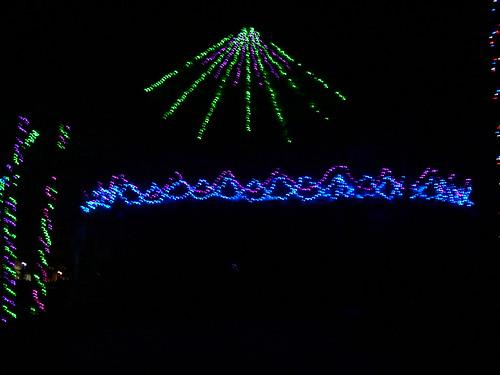 Cedar Point - Starlight Experience Spring