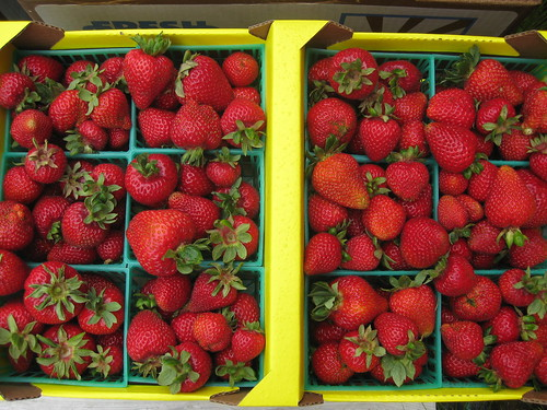 Albion strawberries.
