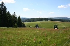 Road from Triberg to Titisee 13 Jun 09 5 (clowesey) Tags: germany schwarzwald blackforest triberg titisee