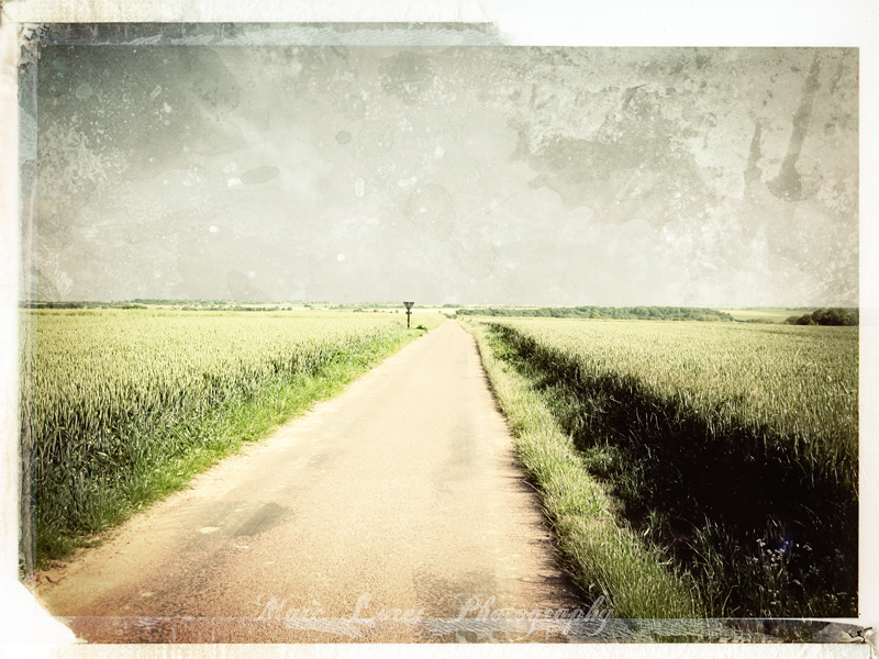 lost In The Country #2