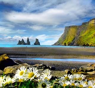 Icelandic landscape #4