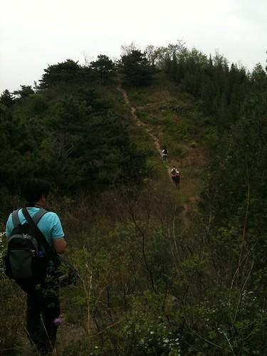 鹫峰 095