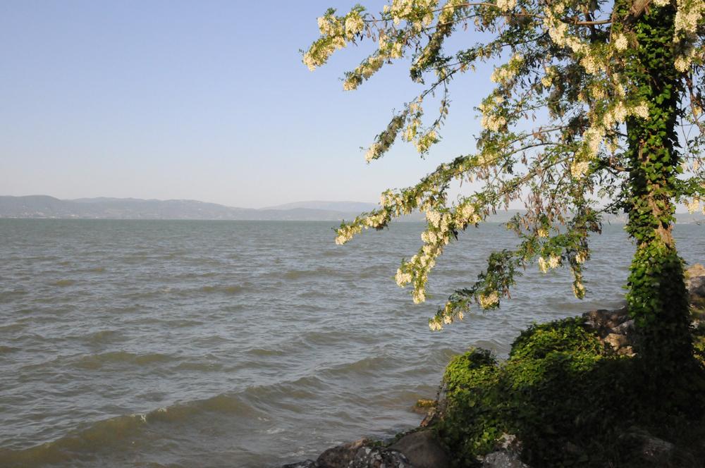Umbria, Castiglione del Lago, Lago Trasimeno