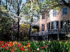 Lemon Hill, Philadelphia (lucymagoo_images) Tags: painterly spring flowers lemon hill philadelphia tulips mansion befunky effects altered enhanced paint painting art digitalart philly nature lucymagoo lucymagooimages fairmount park city urban fairmountpark