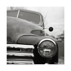53 Chevy Pickup (Daiku_San) Tags: blackandwhite bw chevrolet 120 6x6 film mediumformat ilfordxp2 oldtruck zenzabronicas2 nikkorp7528 bwfp