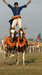 Galloping Bhangra (Ajit Pal Singh) Tags: two horses india sport festival youth rural mouth photo dance war colorful village bullock folk bare teeth events traditional religion culture mini games event winner jaws bite warrior tug olympics sikh cart punjab 2009 baba schedule kila bravery stunt bhangra courage gallop singh daring gallary ludhiana compete galloping quila sportsgame footed grewal clamped qilla raipur nihang giddha kilaraipur mywinners culturetraditional magghar ridingaction speeddaredevil kabbadihistory popularsponsor qilaraipur