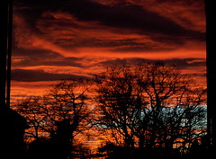 Sunset. (crooked souls) Tags: trees houses sunset silhouette clouds evening spring darlington walls