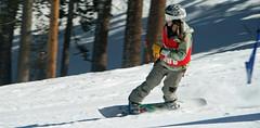 Feb 26 2009 011.jpg (dpranin) Tags: race snowboard boreal