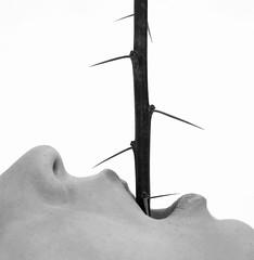 Swallowed feelings (Jenni Holma) Tags: pain hurt 365 spikes feelings swallowed hiddenemotions 2bdasest