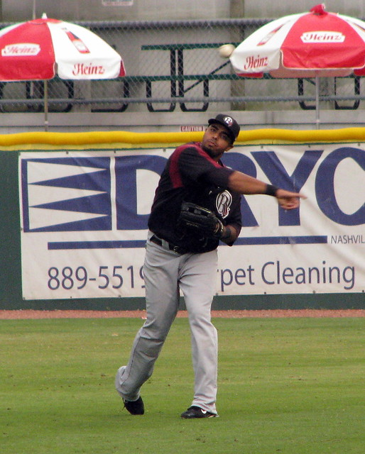 Nelson Cruz throws the ball back in