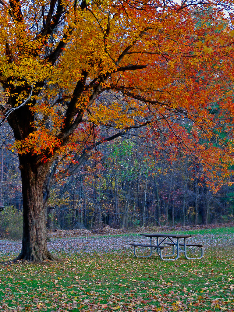 Blacklick Park, Reynoldsburg Ohio