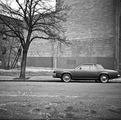 (patrickjoust) Tags: auto city urban bw usa white house black tree 120 6x6 tlr blancoynegro film home car america square lens prime us reflex focus automobile flickr fuji tmax scanner united hill patrick twin maryland super row baltimore scan reservoir v developer epson fujifilm medium format neopan 100 druid states manual 500 heights 80 joust developed ricoh biancoenero rowhouse acros blancinegre estados 80mm f35 blancetnoir unidos ricohflex v500 anastigmat schwarzundweiss autaut lovelycity patrickjoust