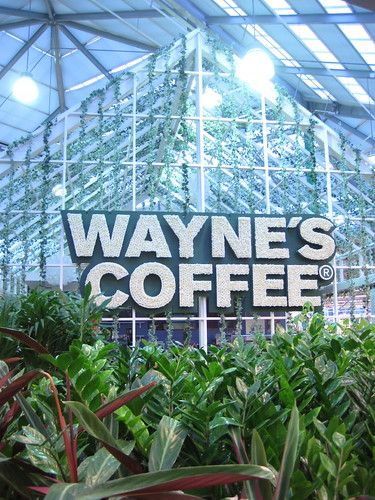 wayne's coffee, stockholm