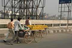 On the road from Delhi to Agra-4