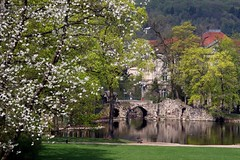 One of my fav places - pond and follies in the park of Meiningen (Linda6769) Tags: park bridge reflection tree water germany bench town pond arch blossom path balcony ruin bank curvy thuringia ruine brcke teich englischergarten blte reflexion baum folly follies englishgarden frhling blooming sitzen meiningen stonebridge steinernebrcke bloomingtree frhjahr madeofstone gewsser blhend explored blhenderbaum treesinspring picturewithmusic artificialruinsbuiltbyjohannandreasschaubach builtbyjohannandreasschaubach aussteingemacht gegenstandausstein bumeimfrhling baumimfrhling