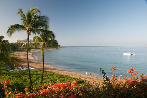 Kaanapali Beach in the Morning from Maui Sheraton