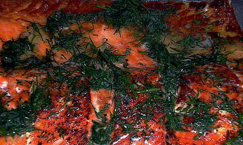 salmondill
