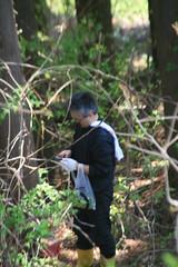 IMG_4816 (shinyai) Tags: japan aomori hirosaki
