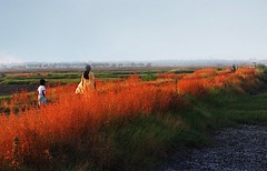 walk (nandadevieast) Tags: shotonfilm vasai anuragagnihotri nandadevieast