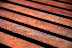 99/365  Rust LInes