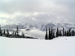 SNOWMOBILING IN REVELSTOKE, B.C. (vermillion$baby) Tags: winter snow vista mountain snowmobiling fun peaks highcountry bc pattys favs pattysfavs tree peak cold ice revelstoke landscape seascape water revelstokef trees