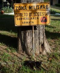 Attenti al gatto! (aldoaldoz) Tags: di gatto zona divieto accesso militare sorveglianza armata attenti aldoaldoz