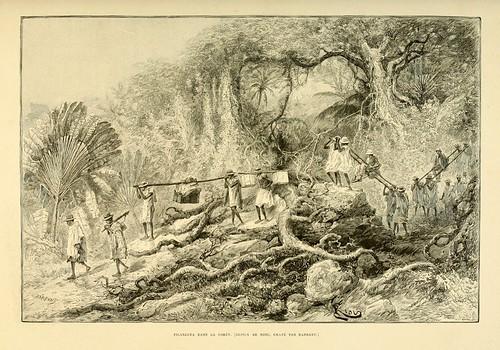 019-Transporte en la selva-Madagascar finales del siglo XIX