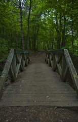 Over the Bridge and Through the Woods (Kevin Tataryn) Tags: park bridge woods nikon montreal royal mount trail d90 18135
