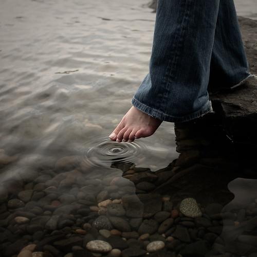 Sự sống có thể tồn tại được nếu thiếu nước hay không?