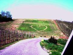 the farmer in love - il contadino innamorato