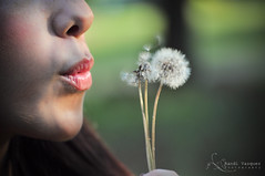 Regan Vasquez (RandiVasquez) Tags: lighting sunset flower girl beauty portraits vintage antique lips blow dandelion wishes teenager glowing pucker dandelions wishing randivasquezphotography