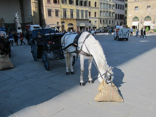 Florentine's answer to the ever increasing cost of gas - altho gas of a different sort is also produced . . .