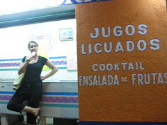 all the foods of hualtuco (Tricia Wang ) Tags: food mexico fruta emilia oaxaca jugos popsicle wiles triciawang hualtuco licuados