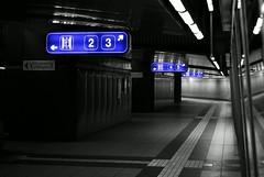 where to go? (smawuascht) Tags: blue friends colour station night grey nikon bahnhof carinthia hauptbahnhof photowalk session d200 mainstation selective villach photowalking