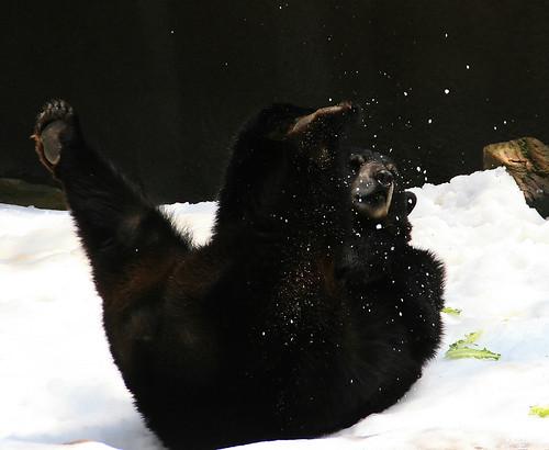 Weeee! Snow!