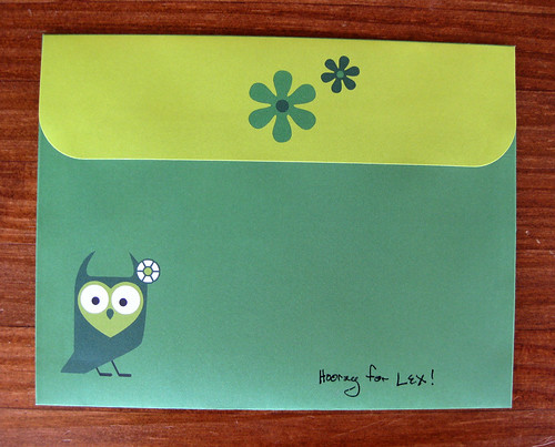 Red Tango owl, back