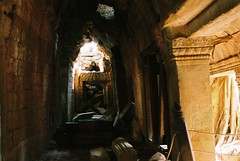Angkor XVI