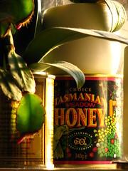 Tasmanian Honey (rachaellazenby) Tags: pink light sun sunlight plant colour green leaves tin golden sweet warmth honey tasmania windowsill tasmanian